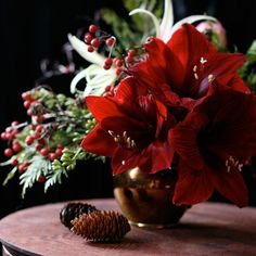 Christmas flower arrangement. Love Amaryllis flowers. <3