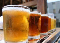 La cerveza podría frenar el desarrollo de enfermedades neurodegenerativas