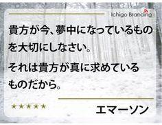 http://ameblo.jp/ichigo-branding1/entry-11470202829.html