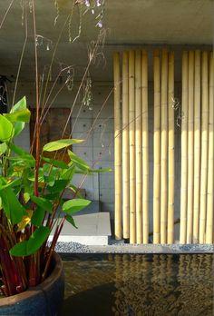 The Bamboo Curtain House,© Sim Boon Yang