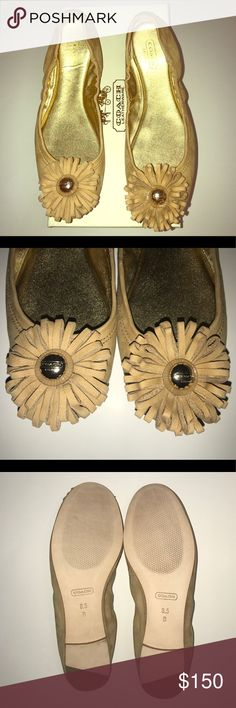 NIB! Coach Yellow Flats NEW! Coach Desert Color Flats!  These 100% Authentic Size 8.5 Coach Ariza Desert Nubuck Ballet Flats are Desert with Gold Hardware. These Coach Ballet Flats are New and the Original Box is included. A classic ballet flat gets a luxurious update  in soft suede leather topped by an intricate  leather flower with a pretty Coach medallion at its center. •Nubuck leather •Soft metallic leather lining •Leather sole •In desert Coach Shoes Flats & Loafers