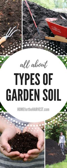 Tips On Organic Gardening For New Gardeners - Types of Garden Soil Explained - All about the different types of soil for your garden Organic Insecticide, Organic Gardening Tips, Vegetable Gardening, Gardening Hacks, Organic Soil, Flower Gardening, Veggie Gardens, Urban Gardening, Hydroponic Gardening