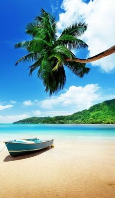 Exotic Island Seychelles 10 Worlds Most Amazing – Top Image Collections Exotic Beaches, Tropical Beaches, Florida Beaches, Nature Images, Nature Pictures, Beautiful Islands, Beautiful Beaches, Beach Photography, Nature Photography