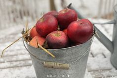Apples ★ Äpplen ★