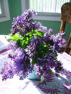 Springtime in Williamsville NY I once had a yard with a lilac bush its fragrance made me smile for I knew that springtime and summer had come to warm me for a while.