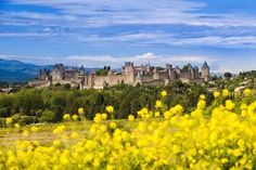 size: Photographic Print: The Fortified City of Carcassonne, Languedoc-Roussillon, France by Nadia Isakova : The Sunday Times, Roadtrip, Holiday Destinations, Monument Valley, Countryside, Places To Visit, Castle, Camping, France