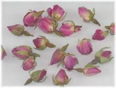 Moss rosebud - confessions of love Flower Meanings, Rose Buds, Drinking Tea, Flowers, Green, Plants, Fabric, Confessions, Google Search