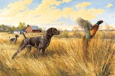 Standing Tall, German Shorthair Pointer and Pheasant Artwork