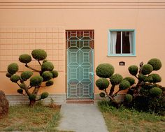 A Topology Of Californian Topiary – iGNANT.de