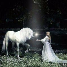 a woman approaching a white unicorn Unicorn And Fairies, Unicorn Fantasy, Unicorns And Mermaids, Unicorn Art, Magical Unicorn, Fantasy Art, Unicorn Club, Baby Unicorn, Magical Creatures