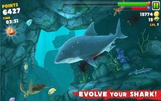 [download free android apps|download free android games|apk manager for best android apps|best android games] ANDROID Hungry Shark Evolution v1.3.5 APK - ANDROID DEVELOPER SPECIAL