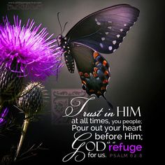 Trust in him at all times, you people; pour out your hearts to him, for God is our refuge. Psalm 62:8