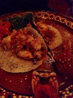 Lobster Tacos at La Perla restaurant in Playa del Carmen, Mexico. www.justapack.com #travel, #budget, #backpacking, #delicious #justapack