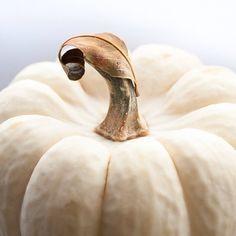 Halloween idées citrouilles