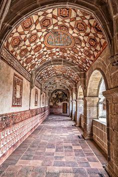 Ex-Convento del Divino Salvador by javiergme