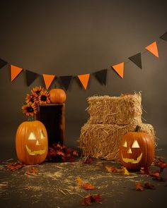 Brown Halloween Photography Backdrops Pumpkin Photo for Shooting - Halloween Backdrop - Halloween Mini Session, Photo Halloween, Halloween Fotos, Halloween Bebes, First Halloween, Halloween Pictures, Halloween Birthday, Vintage Halloween, Halloween Costumes