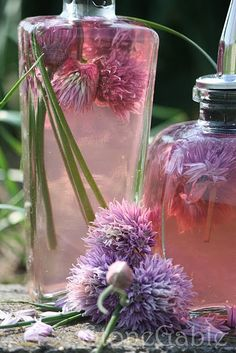 StoneGable: Chive Blossom Vinegar Tutorial _ Chive Blossom Vinaigrette (make it in a mason jar) Using this method I make many different vinegars. Here are some other combinations to make delicious & attractive vinegars: Chive Blossom, Beltane, Edible Flowers, Purple Flowers, Pink Purple, Just In Case, Herbalism, How To Make, Sauces