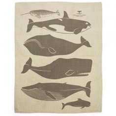 Whales tea towel from Enormous Champion, $25