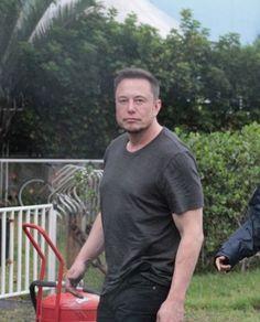 Elon Musk News, Foto Doctor, Elon Musk Quotes, Katrina Kaif, Hot, Remodeling, Champagne, Fans, Celebs