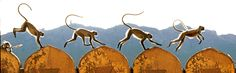 Langur Monkeys, India by Michael Fairchild.
