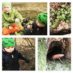 Ei jaksettu olla ihan koko päivää sisällä kurkkupotilaan kanssa joten käytiin pienellä eväsretkellä takapihan metsässä. Kevät tekee tuloaan suosikkivuodenaikani   #metsä #metsäretki #retkellä #eväät #lapset #kevät #huhtikuu #ulkona #outdoors #forest #trip #finland #espoo #nature