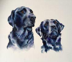 Two black Labradors pet portrait painted by watercolour artist Jane Davies