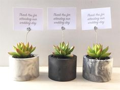The Makers Factory [SYDNEY] is a collaborative providing botanical styling & installations for weddings & events. Succulent keepsake pieces and succulent bombonieres & gifts.