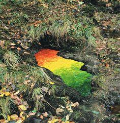 """Andy Goldsworthy (Inglaterra, 1956) es quizá el más brillante exponente del Land Art. Esta corriente artistica asume la naturaleza como material escultórico, interactuando con los cambios del paisaje desde una reflexión profunda sobre la forma, la materia, la energía, el espacio y el tiempo. Todo ello desde una perspectiva efímera.  """"Una roca no es independiente de su entorno. La forma en que se sienta dice cómo llegó hasta allí""""."""