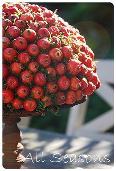 autumn pomegranate centerpiece. from blomsterverkstad-blog