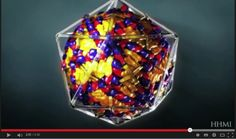 5 interessanti fatti riguardo ai virus / The beautiful symmetry of virus structure
