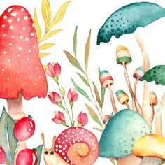 credit cards graphic watercolor mushroom clipart f - Mushroom Clipart, Watercolor Flowers, Watercolor Paintings, Mushroom Art, Arte Floral, Art Plastique, Watercolor Illustration, Art Inspo, Zentangle