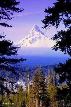 Mt. Washington, Oregon - Interesting Places to Visit - Fire Elf - Best Vacation and Honeymoon Destinations