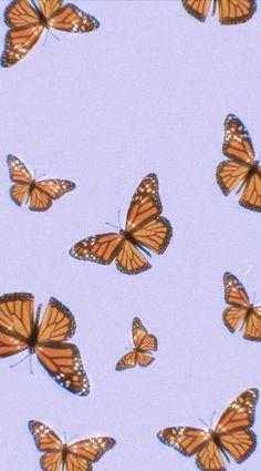 Retro Wallpaper Discover butterfly wallpaper discovered by me on We Heart It butterfly wallpaper discovered by me on We Heart It Wallpaper Pastel, Butterfly Wallpaper Iphone, Cute Patterns Wallpaper, Iphone Wallpaper Vsco, Trippy Wallpaper, Homescreen Wallpaper, Iphone Background Wallpaper, Aesthetic Pastel Wallpaper, Aesthetic Backgrounds