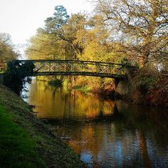 Beautiful weather after last night's storm #Riverwey #Guildford #Surrey