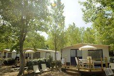 Camping Tucan - Lodge tent