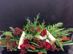 Bold red, birch and winter greens. The Watering Can St.Catharines