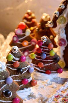 Christmas gingerbread House - gluten free