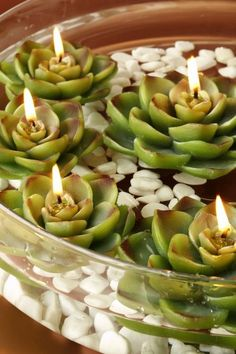 Succulent Floating Candles