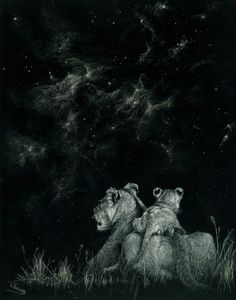 "scratchboard art | Under the Savannah Sky"". Scratchboard art. Now ... 