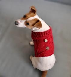 Knitted Red Dog Sweater /  Dog coat / Dog costume / Dog Clothes / Dog Fashion. $35.00, via Etsy. Knit Dog Sweater, Dog Sweaters, Cute Dog Clothes, Red Dog, Dog Costumes, Dog Coats, Christmas Dog, Dog Friends, Puppy Love