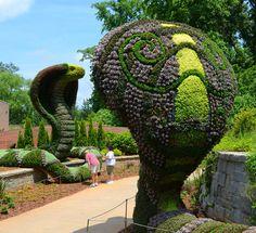 Atlanta Botanical Gardens' Exhibition