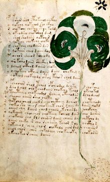 A page from the Voynich manuscript Book Illustration, Illustrations, Voynich Manuscript, Authors, Weird, Books, 17th Century, Libros, Illustration
