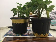 self painted flower pots. they are for sale. cost of one pot is 500 rs.  contact me on my instagram page or on the comments below for orders or for details.  #artwork #homedecor #plants #homedecoration #homefurniture #painted #paint #paints #art #artist #plant #flowerpot #oddball #nehamantry