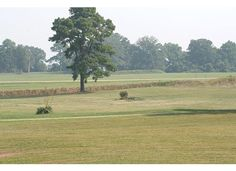Yorktown battlefield. . . used to go down on the cliffs and look out over the river . . .