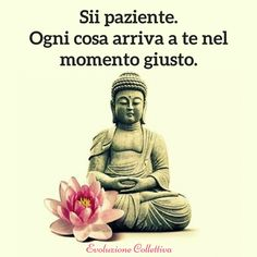 Check out the best Buddha Quotes on life, meditation, spirituality, karma, anger and more to be enlightened you change your life positively. Namaste, Little Buddha, Dalai Lama, Osho, Decir No, Life Quotes, Yoga Quotes, Zen Quotes, Quotes Positive