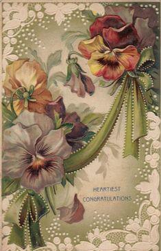 Pansies Vintage Congratulations Postcard