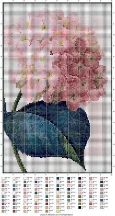 It is adapted from a free thumbnail by using * free pattern wizard!Hydrangea It is adapted from a free thumbnail by using * free pattern wizard! Just Cross Stitch, Cross Stitch Art, Cross Stitch Flowers, Counted Cross Stitch Patterns, Cross Stitch Designs, Cross Stitching, Cross Stitch Embroidery, Needlepoint Patterns, Embroidery Patterns