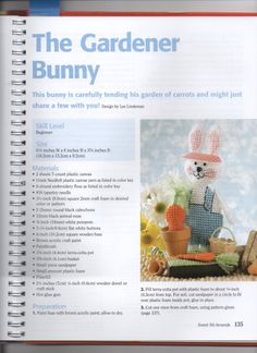 Plastic Canvas THE GARDENER BUNNY page 1 is so cute this is what your finished project should look like.