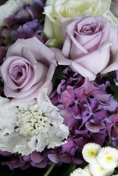 lilac and sterling silver roses