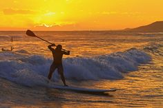 sunset SUP wave by bluewavechris,
